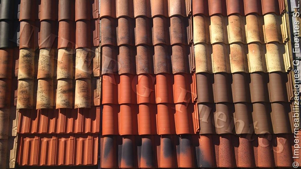 Construcción, Impermeabilización, Reparación y Limpieza de Tejados, Cubiertas, Patios, Terrazas · Solución de Goteras y Humedades · Aislamiento Térmico